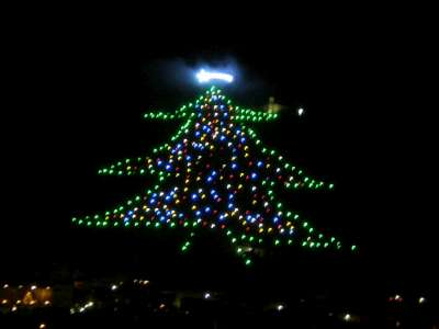 Christmas Tree in Gubbio