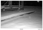 snow-in-al